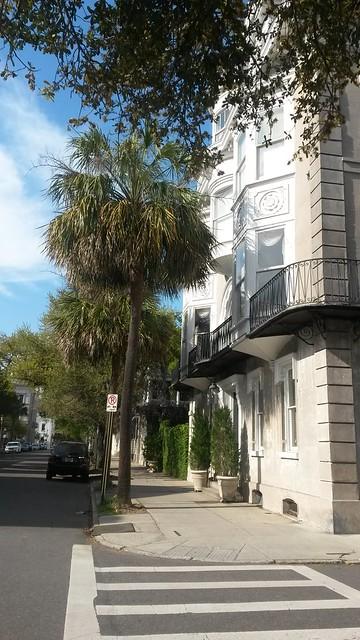 Palmtree City