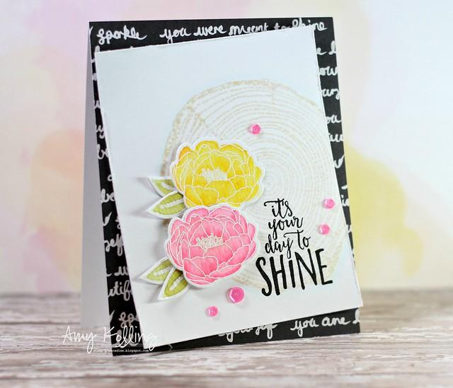 Shine Brighter5