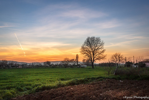 autumn sunset sky orange tree green field clouds landscape countryside scenery outdoor romantic plain platinumheartaward ilobsterit lobsterfall