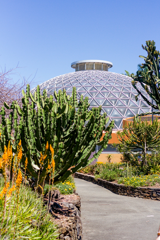 Mount coot-tha botanic gardens tropical dome