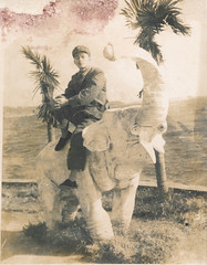 Chinese soldier sitting on an elephant statue