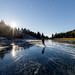 naturehockey