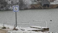 Plongeoir adapté ? - Photo of Mecé