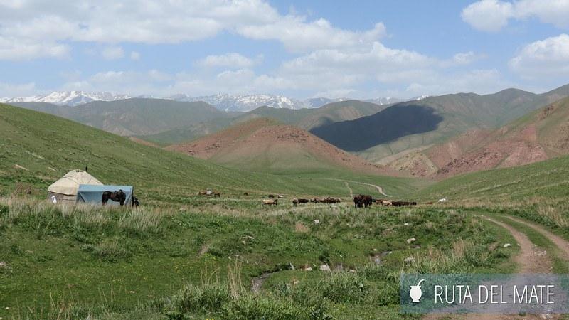 Lago Song-Kol Kirguistán (9)
