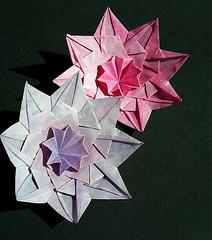 Flowery star (Var B)