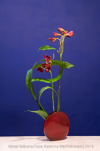 Curved and straight lines Ikebana