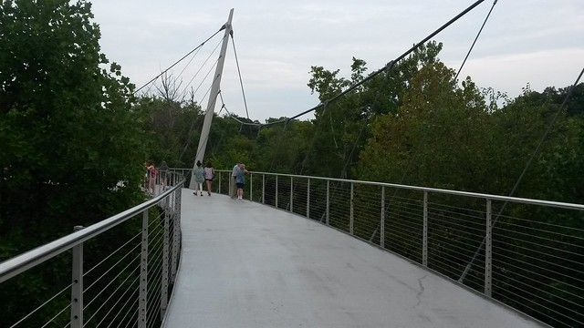 Viewing Bridge