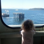 Bunny on a Ferry Adventure