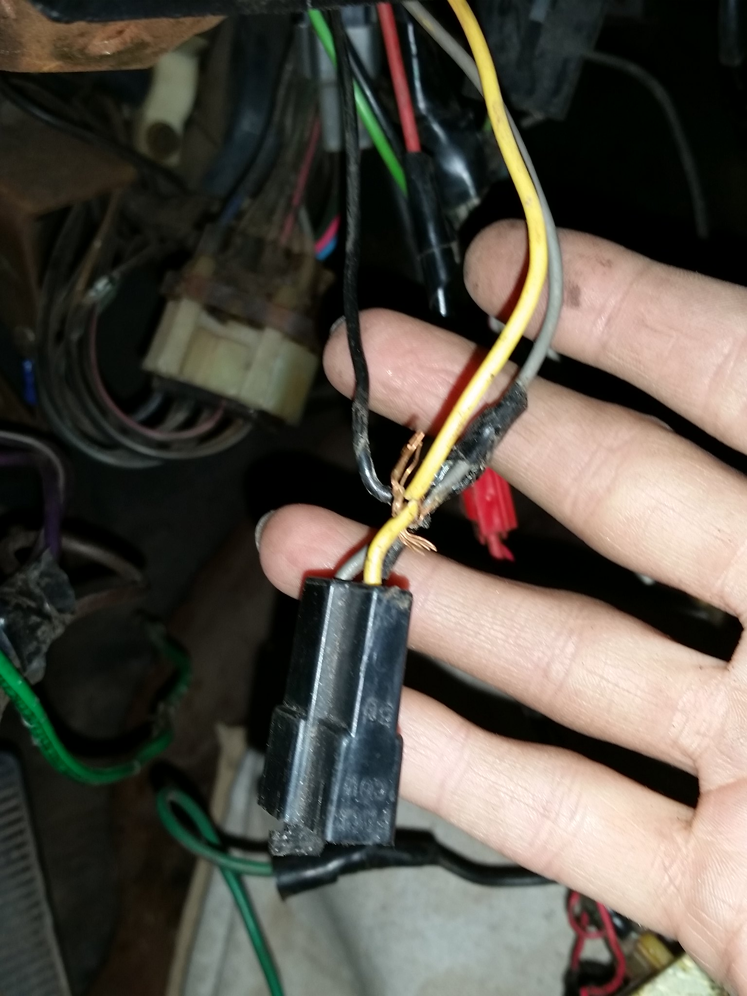 Universal wiring harnesses?  - Page 2 22128661650_e9f9e393cc_k