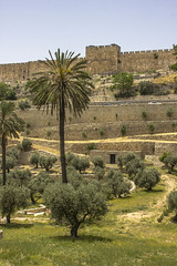 Jerusalem 043
