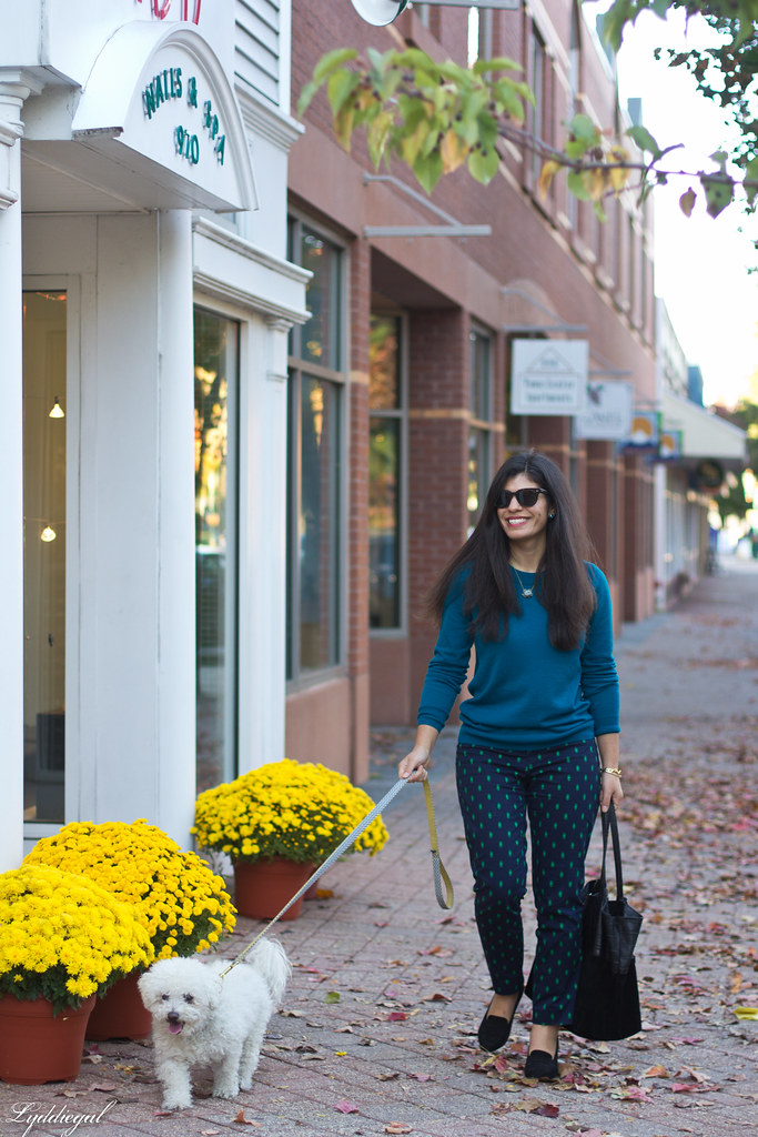teal sweater, printed pants, ferragamo pumps-4.jpg