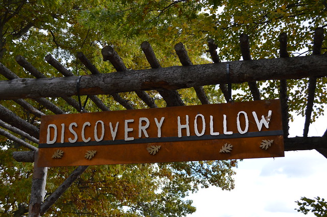 Discovery Hollow Nature Play Area