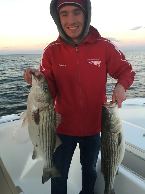 Chesapeake bay fishing news maryland dnr fishing report for Md dnr fishing report