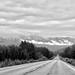 Alaska Route 1_MIN 350_10