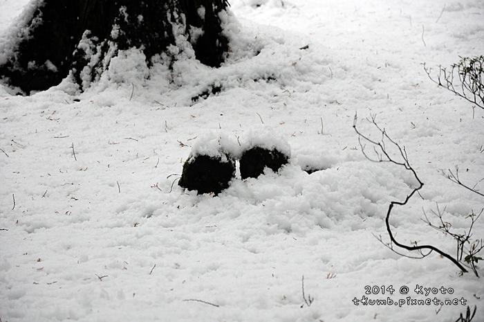 2014雪三千院 (11).jpg