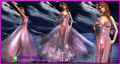 Paisley Daisy - Ethereal Romance Sheer Gown