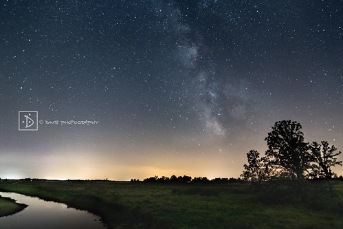 Collins Marsh at night