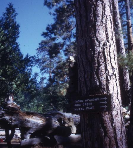Miller_Pine Mtn Lodge 1968_002