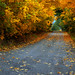 Old country road by adamhillstudios