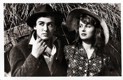 Vittorio Gassman and Silvano Mangano in Riso Amaro (1949)