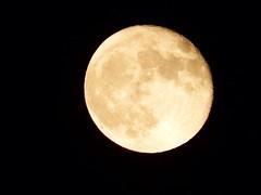 Super moon September 2015