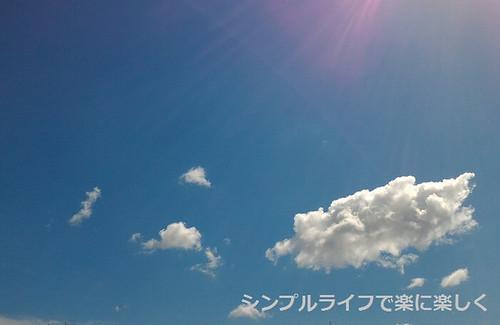 お弁当週報vol.2