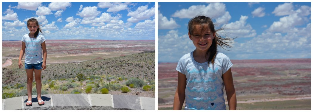 windy painted desert