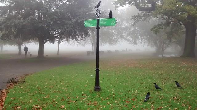 Springfield Park