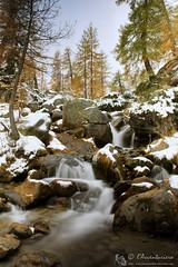 Alpe Deserta e Codelago (Parco nat. Veglia Devero)