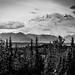 8_Denali NP-3041 by Richard Vernier