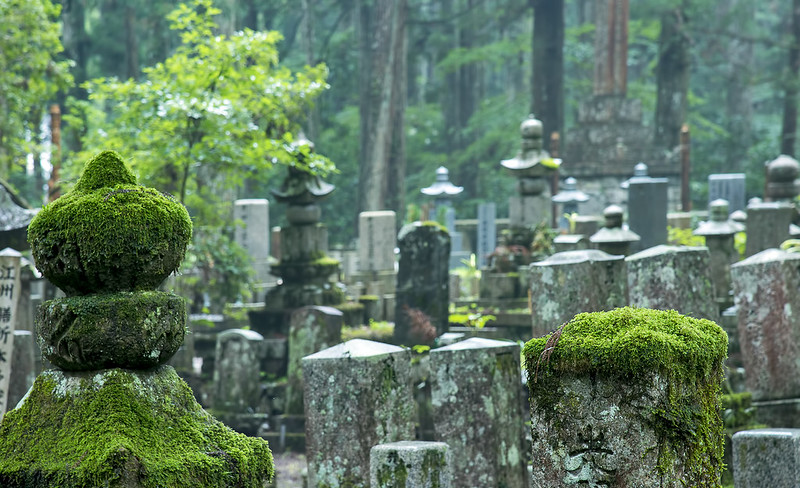 Mossy cemetery