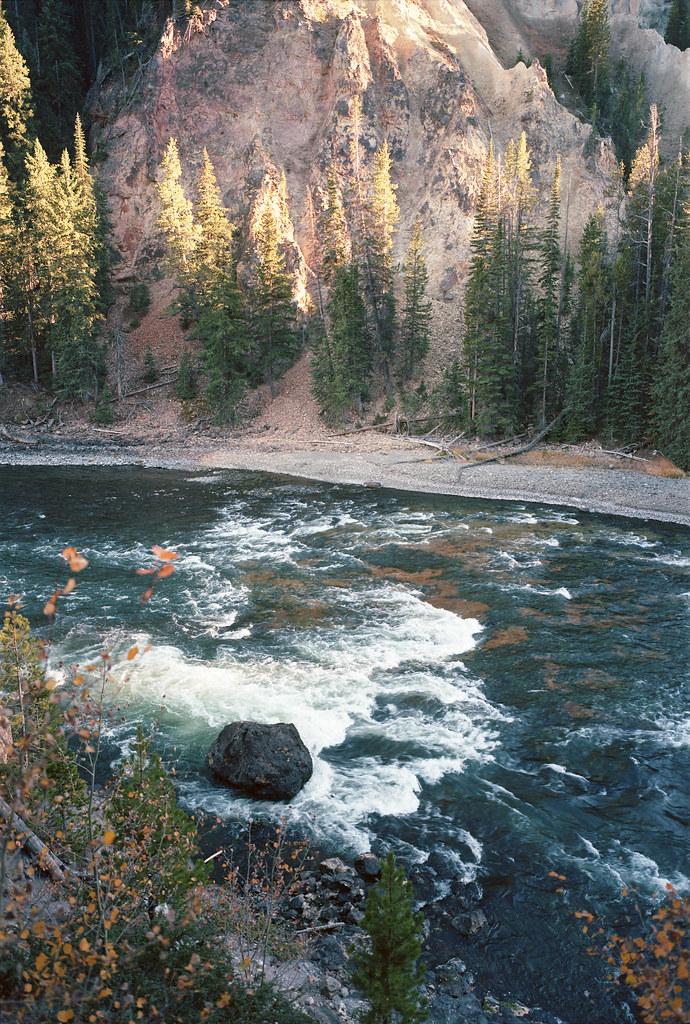 Yellowstone 25