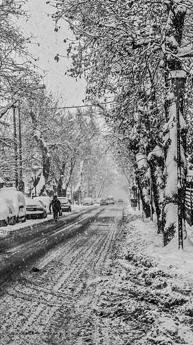 bnw bnwlovers blackandwhite era snow bw trees street streetphoto city road tracks snowtracks neve view greece lamia cityscape pentax sigma prespective snowfall snowstorm
