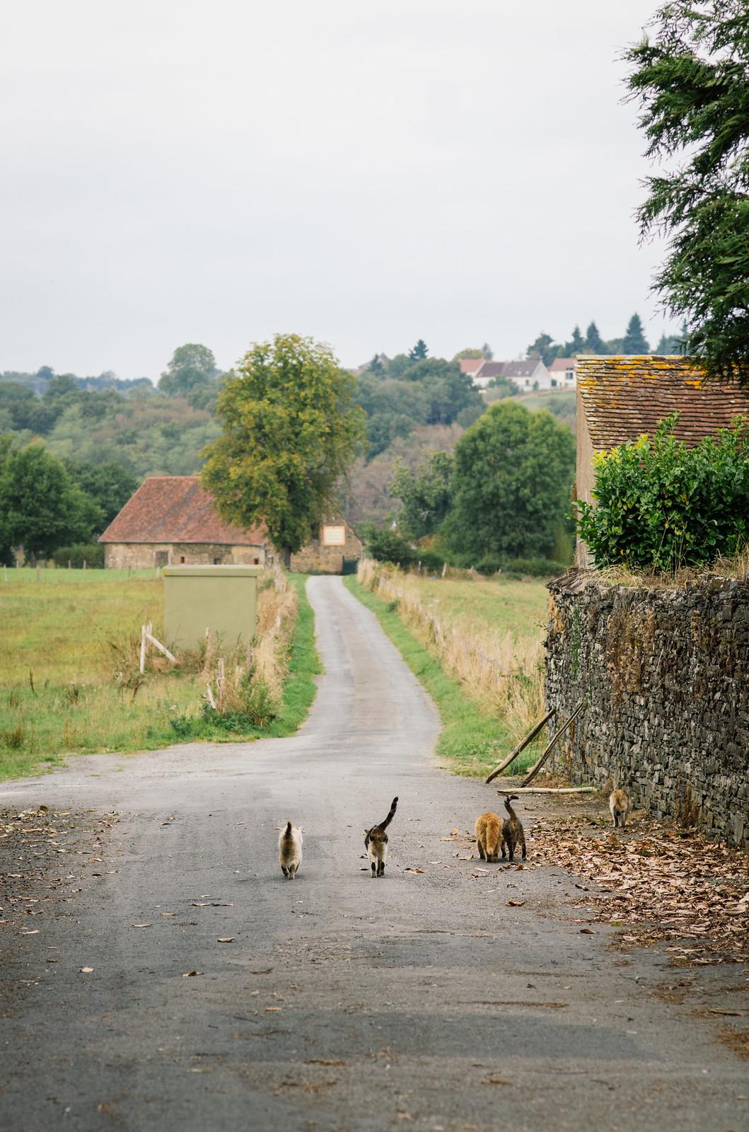 Vallée des peintres -carnet de voyage France