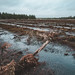 Waterlines in Tved at Natioanlpark Thy