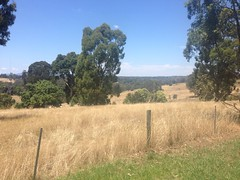 View from Banyule Flats (east), Viewbank