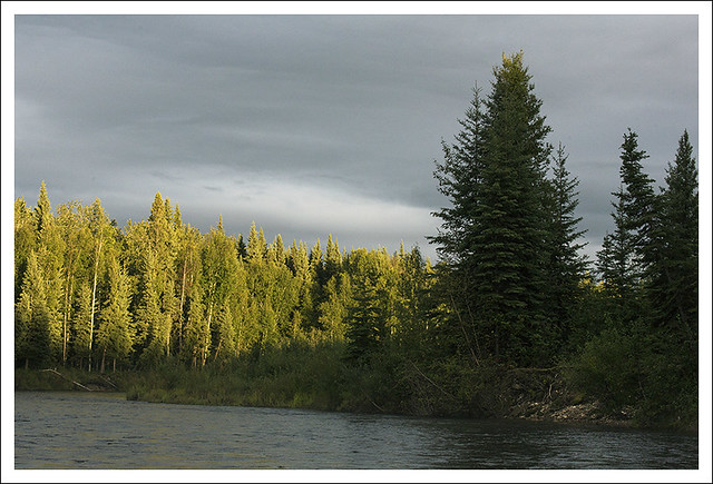 Fairbanks 2015-08-13 3 (Chena River)
