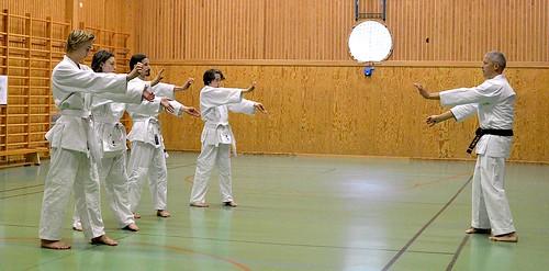 Uechi Ryu Karatekurser i Järnboås