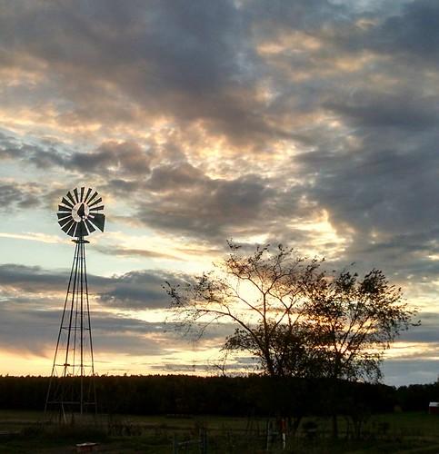 windmill amish molen