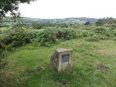 Photo of Bronze plaque number 40488