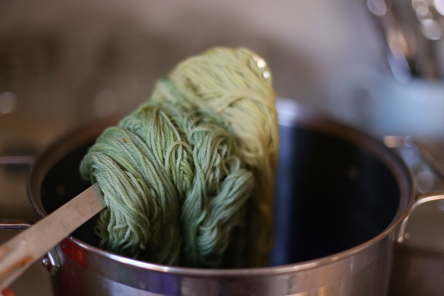 marigold yarn after about an hour in the black bean dye bath (front) and freshly placed skein of marigold yarn (back)