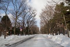 JeromeLim-0585