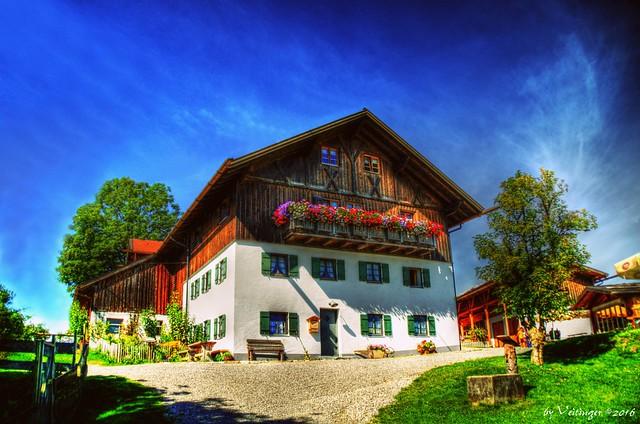 Käsealm Schönegg (Bayern)