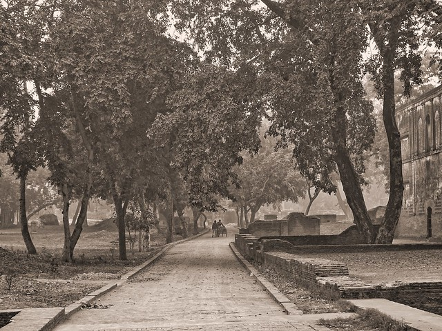 Lucknow Residency, Sony DSC-HX400V, Sony 24-210mm F2.8-6.3