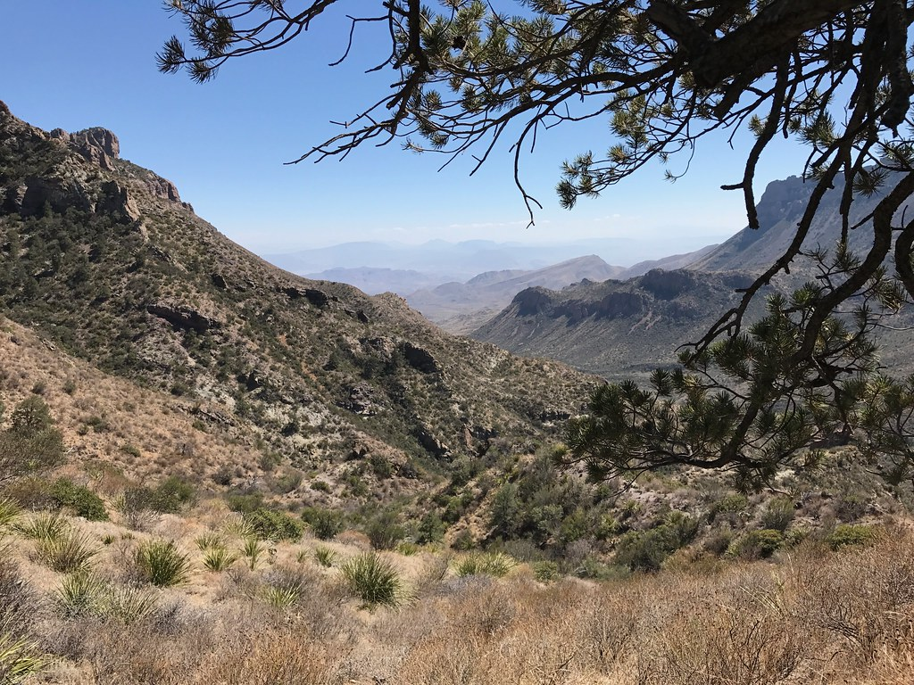 big bend national park guys Big bend national park cannot make reservations for more information visit the campground reservations page camping limits visitors can stay in the park up to 14.