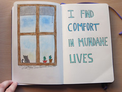 I find comfort in mundane lives
