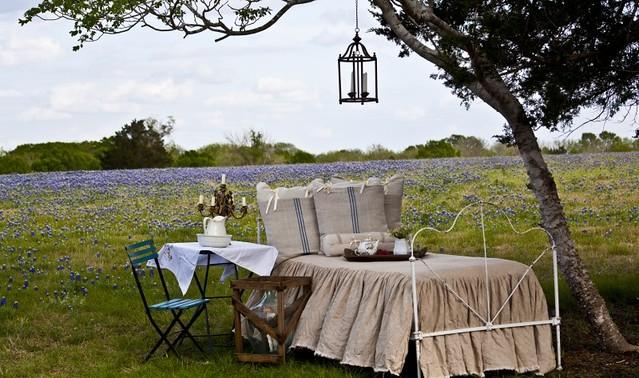 bed-in-field-e1425874227679