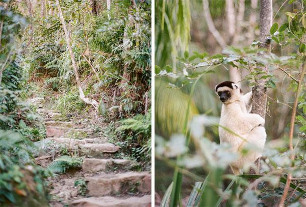 RYALE_Madagascar_Blog2_034