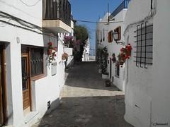 Mojacar (Almeria)
