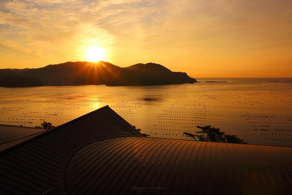 金の渡津海 - Golden sea